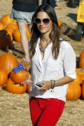 Alessandra Ambrosio at Mr. Bones Pumpkin Patch in West Hollywood, 16 October, x35